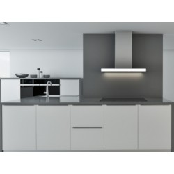 P-915 WALL-MOUNTED CEILING HOOD